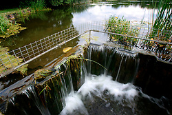 UK ENGLAND WEST SUSSEX BURTON POND 11AUG06 - Water at Burton Mill Pond in west Sussex...jre/Photo by Jiri Rezac..© Jiri Rezac 2006..Contact: +44 (0) 7050 110 417.Mobile:  +44 (0) 7801 337 683.Office:  +44 (0) 20 8968 9635..Email:   jiri@jirirezac.com.Web:    www.jirirezac.com..© All images Jiri Rezac 2006 - All rights reserved.