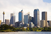 Sydney Harbour showing Sydney Tower, New South Wales, Australia