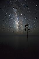 Milky Way Galaxy Over Pacific Ocean, Big Sur, California