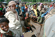 GONDAR/ETHIOPIA..Market at the village Enfranz on the road from Gondar to Bahar Dar..(Photo by Heimo Aga)