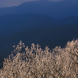 Chattahoochee N.F., GA. Ice coats the trees on Springer Mountain in early spring.  Georgia's Blue Ridge Mountains are in the distance.  Appalachian Trail.