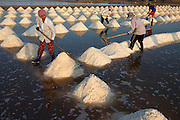 Labourers toil in the intense heat to harvest salt from coastal pans, off the Gulf of Thailand,on the Samut Songkhram coastline southwest of Bangkok.