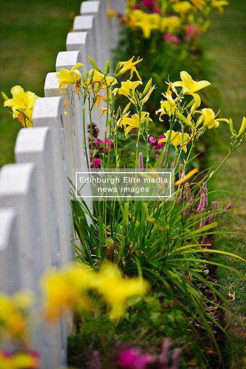 War Graves in Military Cemetary, Tourgeville, Normandy, France<br /> <br /> (c) Andrew Wilson   Edinburgh Elite media