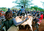 Whipping of young women in Ethiopian Tribal ceremony<br /> <br /> To the south of Addis Ababa, capital of Ethiopia, lies the tribal animist area. It stretches from Addis all the way to Lake Turkana, formerly known during colonial times as Lake Rudolph, which borders Kenya.<br /> <br /> The italian historian Carlo Conti Rossini has described this part of Ethiopia to be a Museum of People&rsquo;s as there are at least eight major tribal groups living here -  numbering around 200,000,<br /> who until recently were largely untouched by outside influences. But change is on the way, not least the impact of global phone technology  - and the development of the country&rsquo;s mineral resources by the Chinese.<br /> <br /> The annual flooding of the Omo River has been the life-support for the tribal people of this region.  For centuries the powerful flow and huge rise and fall of the river have provided up to three harvests a year for the indigenous people&rsquo;s staple crop - the highly nutritious SORGHUM<br /> <br /> But in 2006 President Meles Zenawi of Ethiopia commissioned the construction of the tallest hydro-electric dam in Africa.  The project was never put to tender, the tribal groups never consulted,<br /> and conservation groups today believe that the dam will destroy an already fragile environment as well as the livelihoods of the tribes, which are closely linked to the river and its annual flood.<br /> <br /> One of the most spectacular ceremonies in the Lower Omo Valley is the UKULI BULA ceremony of the Hamar tribal group; it&rsquo;s effectively a Rite-of-Passage from boy to manhood. And marriage.<br /> To reach manhood, Hamar boys must undergo two rituals: circumcision and a leap over the bulls. This determines whether the young Hamar male is ready to make the social jump from youth to adulthood. <br /> After a successful bull-jump - always naked - the Hamar boy, now a Maz - a mature member of the society - may get married.<br /> At every ceremony around two