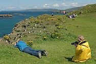 Visitors to island of Lunga and Atlantic puffins (Fratercula arctica) breeding colony. July 2011.