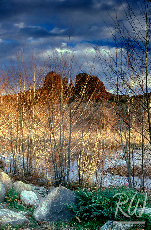 Shaft of Golden Light on Trees in Front of Cathedral Rocks at Red Rock Crossing, Sedona, Arizona