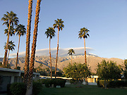 residential compound with palm trees and mountains in the background Palm Springs USA