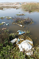Plastic pollution in a water system used for drinking water, Luderitz, Namibia