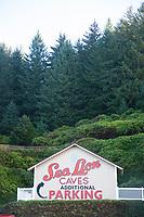 Sea Lion Caves along the Oregon coast.