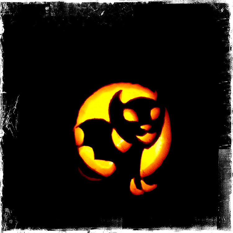 Flying cat pumpkin - Houston, Texas