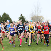 2015 NCAA Cross Country Championships: Maya Weigel (Pomona-Pitzer), Katherine Tercek (Middlebury), Lucy Ramquist (UW-Eau Claire), Amelia Keyser-Gibson (Haverford), Katie Sullivan (Haverford), Megan Kellogg (St. Lawrence) at the NCAA Division III Cross Country Championships in Winneconne, Wisconsin, on November 22, 2015.