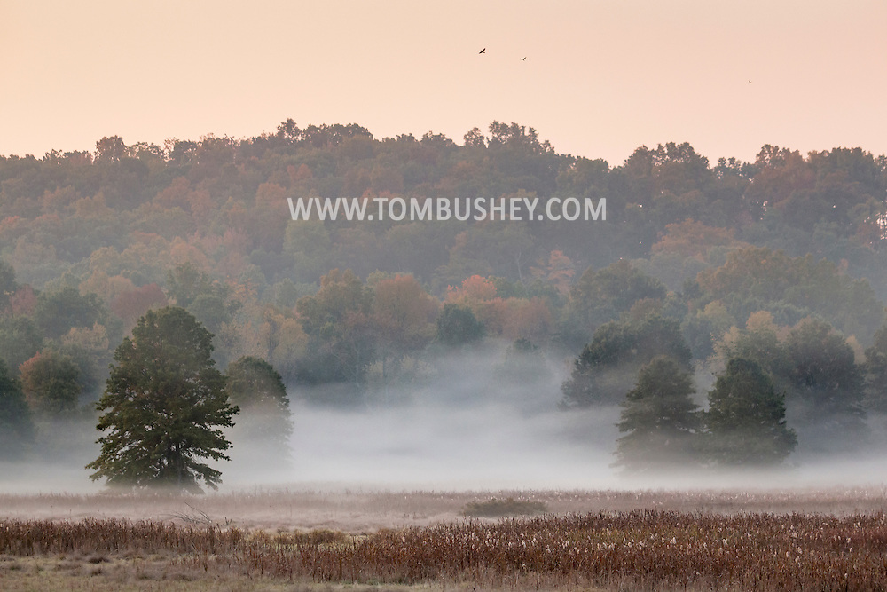 Goshen, New York -A misty fall morning at the 6 1/2 Station Road Sanctuary on Oct. 16, 2016.