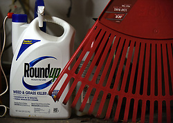 March 27, 2019 - Orlando, FL, United States - March 27, 2019 - Orlando, Florida, United States - A container of Roundup weed killer is seen in a garage in Orlando, Florida, on March 27, 2019, the day a California jury awarded $80 million in damages to a man who claimed the herbicide gave him cancer. Bayer, the parent company of Monsanto, the product's maker, said it would appeal the verdict. (Credit Image: © Paul Hennessy/NurPhoto via ZUMA Press)