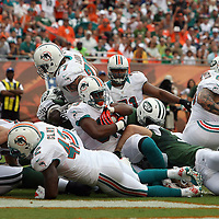 Running back Daniel Thomas (33) scores a touchdown during an NFL football game between the New York Jets and the Miami Dolphins on Sunday, September 23, 2012 at SunLife Stadium in Miami, Florida. (AP Photo/Alex Menendez)