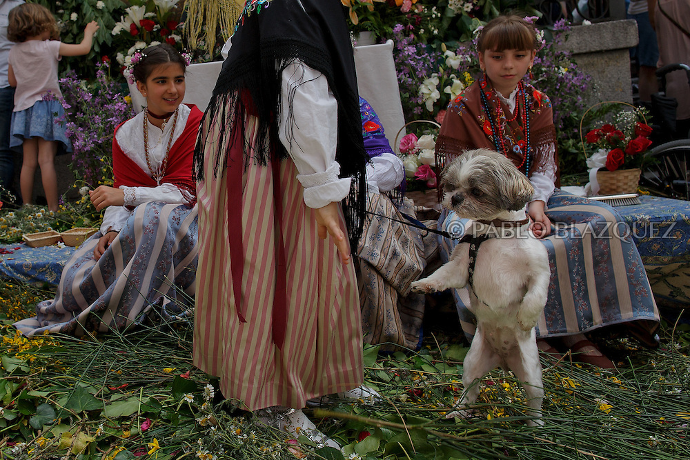 'Maya' girls sit as a dog stands during the 'Maya' tradition in the streets around the San Lorenzo church on May 10, 2015 in Lavapies neighborhood, Madrid, Spain. 'La Maya' festivity is a pagan tradition to celebrate the beginning of the spring which is believed to come from the medieval age. In old times the 'Maya's Festival' used to take place at The 'Mayas' field' (Prado de las Mayas) which is where now the San Lorenzo church is located. La Maya combines symbols of fertility and prosperity on agriculture and shepherding economy. A 'Maya' girl dressed with traditional customs sits on an altar in the street decorated with flowers, plants and cushions. Other Mayas and Mayos offer flowers, traditional sweets, lemonade, and wine to members of the public as they play music and dance. (© Pablo Blazquez)