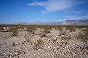 scenic photo of desert