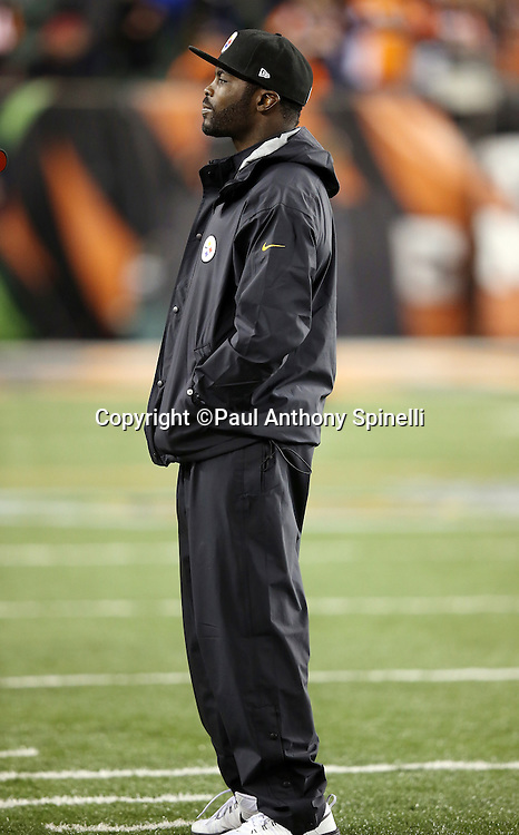 Pittsburgh Steelers quarterback Mike Vick (2) is inactive in street clothes on the sideline before the NFL AFC Wild Card playoff football game against the Cincinnati Bengals on Saturday, Jan. 9, 2016 in Cincinnati. The Steelers won the game 18-16. (©Paul Anthony Spinelli)
