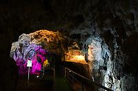 La grotta dell'Arco, nota cavità carsica sui Monti Ernici nel Comune di Bellegra (Roma), è uno dei sei siti nora noti nella regione Lazio con manifestazioni di arte rupestre pre-protostorica.<br /> Morfologicamente si tratta di una grande galleria in leggera ascesa, percorsa da un torrente per oltre 1 chilometro, con un dislivello del letto del torrente, dall'ingresso al fondo, di +14 metri. <br /> <br /> Le visite sono suddivise in due percorsi: Turistico e Speleologico.<br /> <br /> Il Turistico è un percorso dove non ci sono prescrizioni di nessuna natura e la visita è fruibile in tutta sicurezza e da chiunque desidera partecipare. Il percorso è in passerella artificiale e un'illuminazione adeguata per una lunghezza di circa 300 metri.<br /> <br /> Lo Speleologico è un percorso dove vengono fornite attrezzature quali: casco, stivali e una torcia. (noleggiabili in situ).<br /> Si caminerà per un percorso di circa un chilometro, in un ambiente incontaminato, nel letto del torrente e apprezzando le caratteristiche naturali e peculiari della grotta.