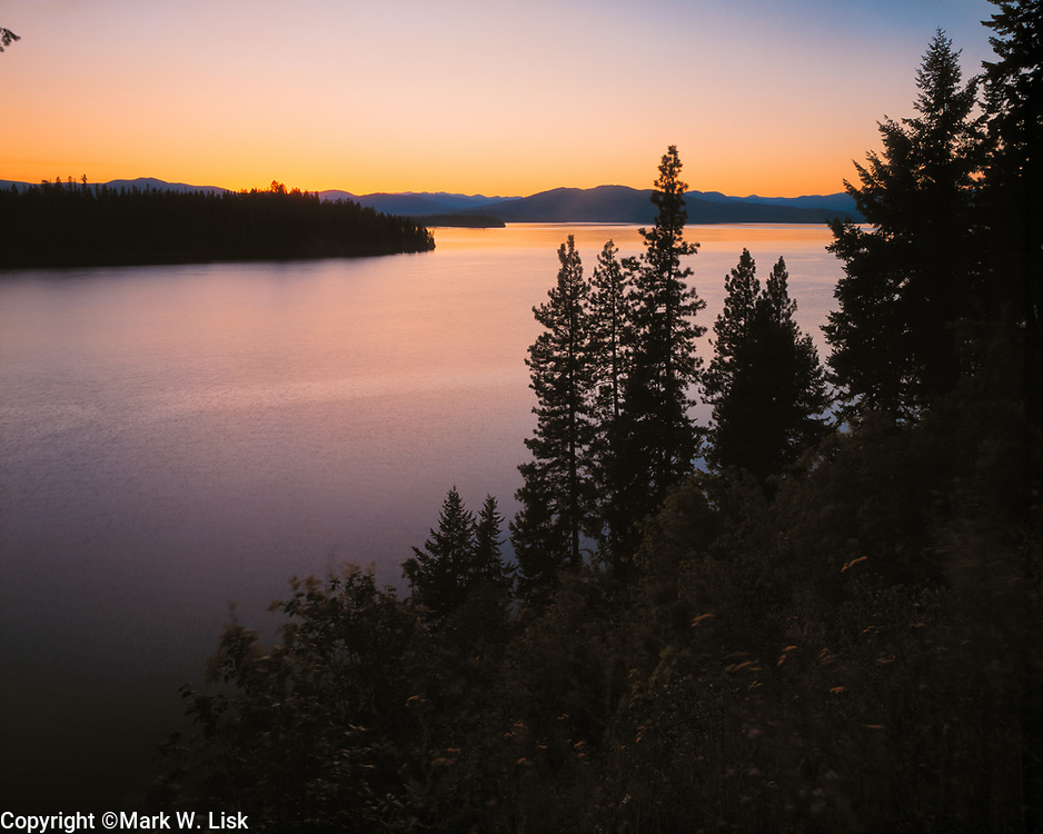 Pine trees cover the banks and rolling hill at Priest Lake in Northern Idaho.