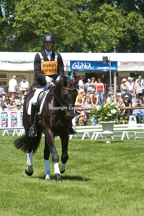 Furst Opera  Stallion Parade  Bramham International Horse Trials 2011