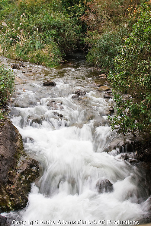Mountain river flowing out of the reserva ecologica Cayambe-coca, sign at the entrance of the reserve, Cayambe-coca Ecological Reserve, high in the Andes Mountain, Papallacta Pass, east of Quito, Ecuador.