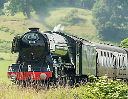 BR 60103 The Flying Scotsman steam locomotive on its way through Shropshire, England<br /> <br /> (c) John Baguley | Edinburgh Elite media