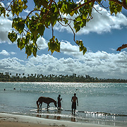 SAN JUAN, PUERTO RICO -- JANUARY 31, 2019: <br /> A couple of young men take a horse into the water of the beach known as Vacia Talega in the coastal town of Loiza, just outside San Juan, Puerto Rico.<br /> (Photo by Angel Valentin)