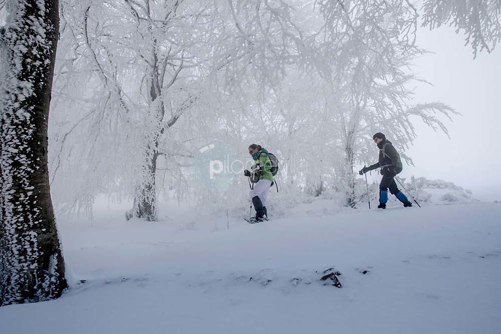 Pazuengos ruta raquetas ©Daniel Acevedo / PILAR REVILLA