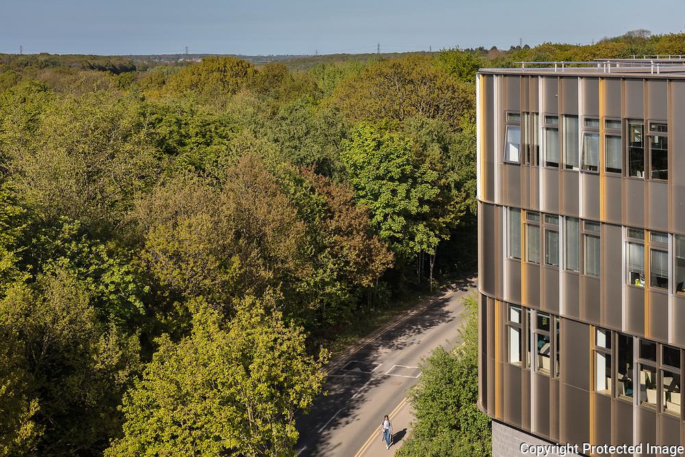 Sibson Building, University of Kent. Architect: Penoyre & Prasad