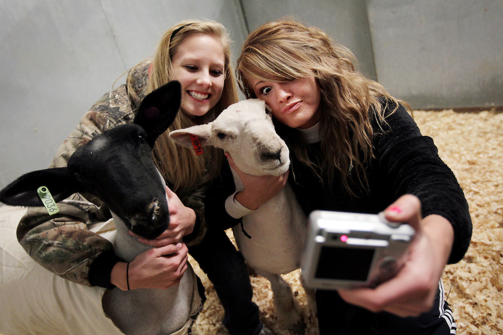 """(01/06/10) -- Allen High School seniors and first-year FFA members April Butler, right, and Jensen DeGroot take a self-portrait with their sheep Pickles, right, and Moo, left, at the Collin County Junior Livestock Show at the Myers Park and Event Center in McKinney Wednesday January 6, 2009. On the first day of this school year, April's friend asked her, """"Do you want to be a shepherd?"""" Though she had no prior farm animal experience, Butler signed up because it sounded different and fun. (Courtney Perry/The Dallas Morning News) 01082010xMETRO. 01082010xBRIEFING"""