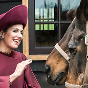 NLD/Amersfoort/20171024 - Streekbezoek Koning Alexander en koningin Maxima aan Eemland, Maxima Koningin Maxima aait paarden