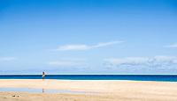 A woman wearing a bikini, walking on Hanakapi'ai beach along the Na Pali Coast of Kauai, Hawaii, USA.