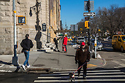 A man with a red baseball cap walks across the crosswalk with his small dog outside Holy Trinity Lutheran Church, West 65th Street, yellow taxi and cars are passing traffic along Central Park West, New York City, New York, United States of America.  (photo by Andrew Aitchison / In pictures via Getty Images)