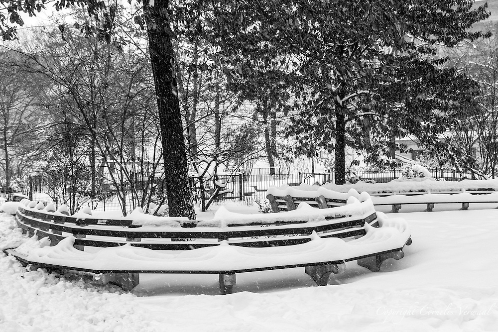 Central Park benches during the blizzard of 2016.
