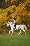Woman riding a horse, Fall Foliage