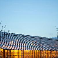 Greenhouses, Hveragerði, Iceland, December 24, 2013.