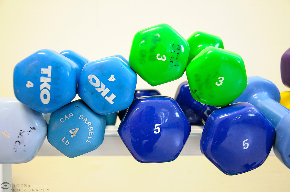 Assorted weights, exercise equipment.