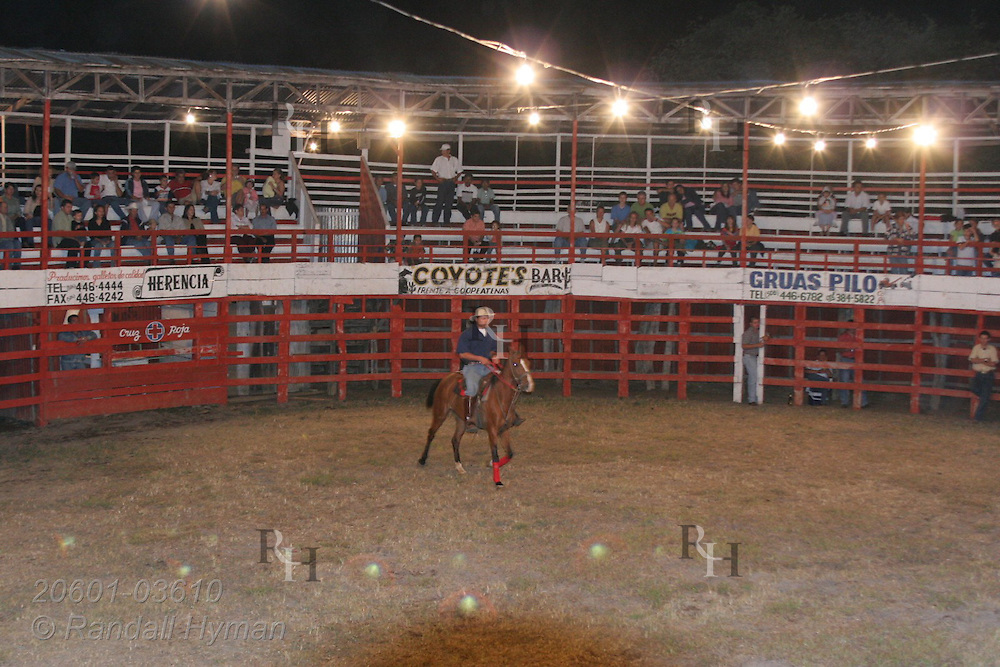 Cowboy rides horse at start of rodeo in Atenas, Costa Rica.