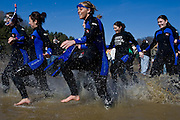 """Kristin Todd, left, leads her club soccer team into the freezing cold water during the """"Freezing for a Reason: Polar Bear Plunge"""" at Dow Lake on Saturday, February 16, 2008 in Athens, Ohio.  photo by Kevin Riddell"""