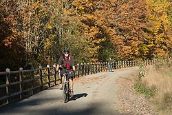 United States, Washington, Kirkland, man bicycling on Cross-Kirkland Corridor path in fall.