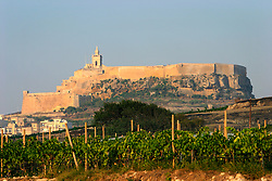 MALTA GOZO VICTORIA 21JUL06 - General view of the Citadella and Rabat fort which forms the tallest part of Gozo's capital Victoria...jre/Photo by Jiri Rezac..© Jiri Rezac 2006..Contact: +44 (0) 7050 110 417.Mobile:  +44 (0) 7801 337 683.Office:  +44 (0) 20 8968 9635..Email:   jiri@jirirezac.com.Web:    www.jirirezac.com