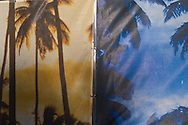 Close-ups of paintings on the walls of buildings in downtown Miami Beach, Florida