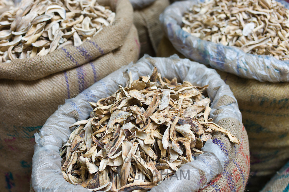 Dried mango skins on sale at Khari Baoli spice and dried foods market, Old Delhi, India