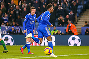 Goal 1-0 Leicester City midfielder Demarai Gray (7) celebrates scoring the first goal during the Premier League match between Leicester City and Brighton and Hove Albion at the King Power Stadium, Leicester, England on 26 February 2019.