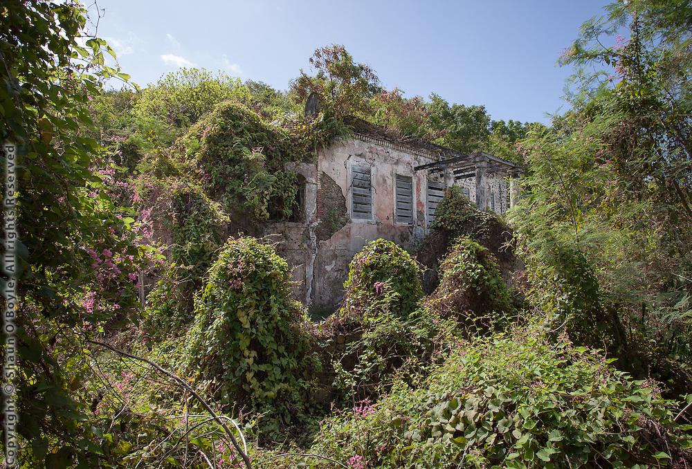 Reef Bay Great House 2012, St John, USVI
