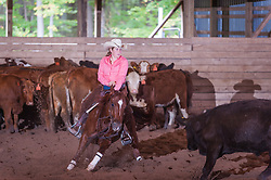 September 23, 2017 - Minshall Farm Cutting 5, held at Minshall Farms, Hillsburgh Ontario. The event was put on by the Ontario Cutting Horse Association. Riding in the $25,000 novice Horse Non-Pro Class is Karen Hudon on Sophisticated Gun owned by the rider.