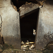 Doorway of a severely damaged home in the village of Kpoto, Benin on Tuesday October 26, 2010.  Waters have receded in Kpoto, but most of the village was literally flattened by floods that have hit Benin over the past few weeks..