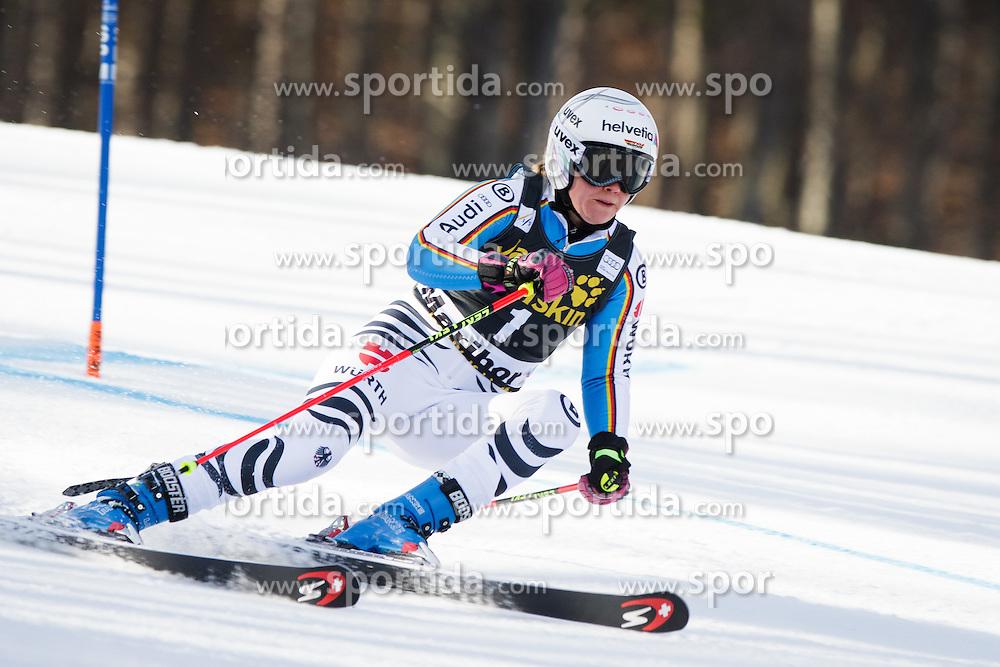 Viktoria Rebensburg (GER) during Ladies' Giant slalom at 52nd Golden Fox - Maribor of Audi FIS Ski World Cup 2015/16, on January 30, 2016 in Pohorje, Maribor, Slovenia. Photo by Ziga Zupan / Sportida