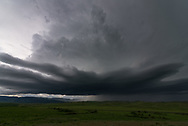 "This severe thunderstorm rolled out of the Bighorn Mountains near Aberdeen, Montana. After it passed by I found 1.5"" hailstones on the ground."