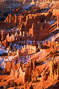 Bryce Canyon Hoodoos in Morning LIght